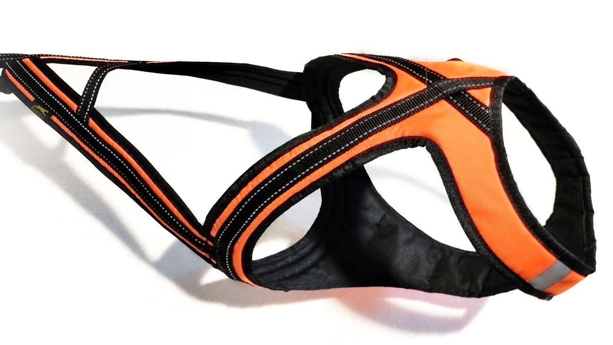 Racedog DRAGON Open Back padded harness