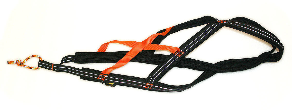 RaceDog padded harness Reflective