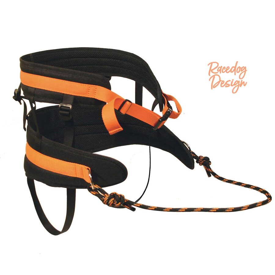 RaceDog canicross belt Advanced