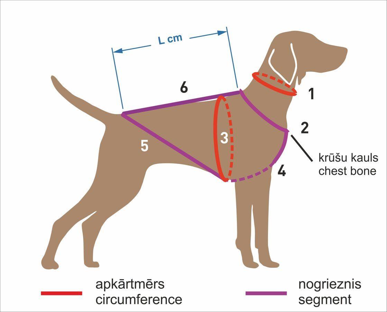 RACEDOG padded dog harness ALASKA X-Back