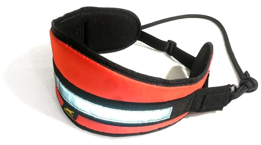 RaceDog canicross belt Easy